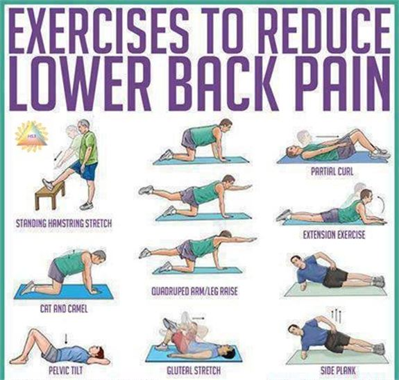 Easy Home Exercise Equipment: Eliminate Back Pain With Easy Exercises