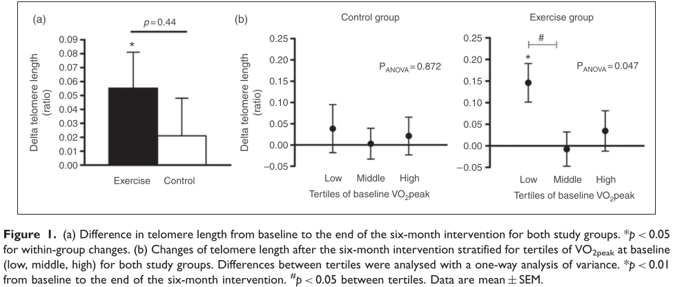 Telomere length graph